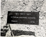 Plaque at the Guicherd tree, Avenue of the Just, Yad Vashem